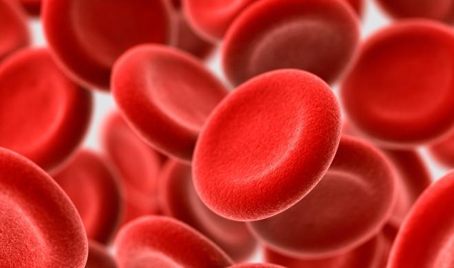 女性常见的缺铁性贫血